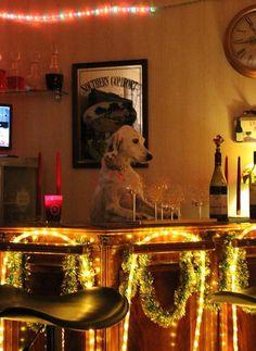 03人とまるで同類、オレたちニンゲン.  Bartender Dog.  Tell me your problems and I'll pour you a drink.