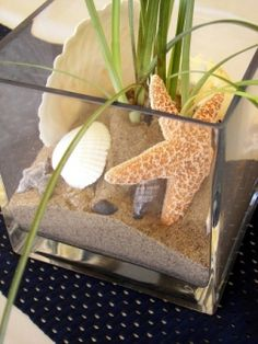 Nautical+Theme+Centerpieces | ... wedding centerpieces isn't always about wanting to save money
