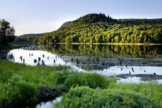 parc national mont orford - Recherche Google