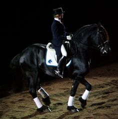 Elegence  Goffert 369, a Friesian, does freestyle dressage by Rock and Racehorses, vi (Breyer made a model of him!)