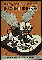 """WHEN A FLY WIPES HIS FEET ON YOUR FOOD, HE'S SPREADING DISEASE! NEVER GIVE A GERM A BREAK!"", 1941 - 1945."