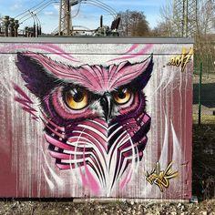 "1,033 Me gusta, 25 comentarios - JAYN (@jayn_one) en Instagram: ""today a screech owl... #jayn #abscrew #lgacrew #fruitsofdoom #owl"""