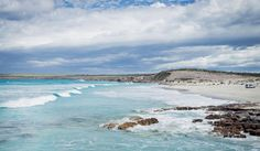 For all things marine and an ocean of incredible wildlife, the Seafood Frontier drive around South Australia& Eyre Peninsula proves fascinating and delicious South Australia, Western Australia, Australia Travel, Australian Road Trip, West Coast, Places To Go, Journey, Ocean, The Incredibles