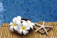 thailand spas | Thai massage combines ancient techniques from China that involve ...