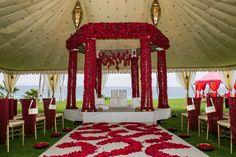 Stunning decor under