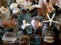 Love the combination of sea objects with   worn vintage bottles.