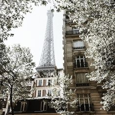 paris, france, and eiffel tower image Places Around The World, Oh The Places You'll Go, Places To Travel, Places To Visit, Around The Worlds, Tour Eiffel, Paris Torre Eiffel, Oh Paris, Louvre Paris