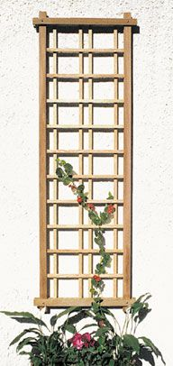 Trellis for west end of porch with flower pot rings?