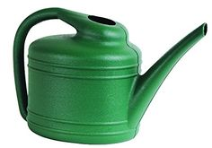 Watering Can, 1 Gallon, Fern: A simple and colorful solution to daily gardening upkeep. Our one gallon watering can is perfect for indoor or outdoor use with its durable, plastic construction and easy to fill opening on top. Pitcher Plant, Dynamic Design, Watering Can, Ferns, Shades Of Green, Home And Garden, Indoor, Patio, Canning