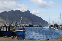 hout bay harbor Where The Heart Is, Cape Town, South Africa, Westerns, Past, African, Spaces, City, Travel