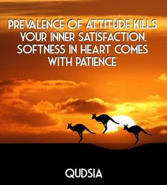 Prevalence of attitude kills your inner satisfaction. softness in heart comes with patience qudsia qudsia - Add text to your images with PixTeller