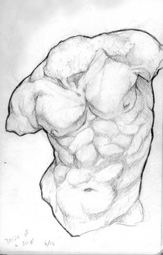 Anatomy Drawing Male Satyr Torso by WieldstheKey on DeviantArt - Male Figure Drawing, Figure Drawing Reference, Body Drawing, Anatomy Drawing, Cat Drawing, Drawing People, Anatomy Reference, Anatomy Sculpture, Ancient Greek Sculpture