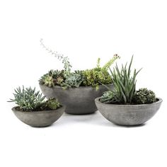 Showcase your garden greenery with this set of elongated flower pots. Crafted with light weight cement and natural jute fiber from the Mekong delta, these planters were made by talented artisans in Viet Nam.