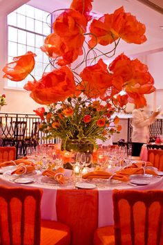 Homage to the California Poppy | Red Floral Decor