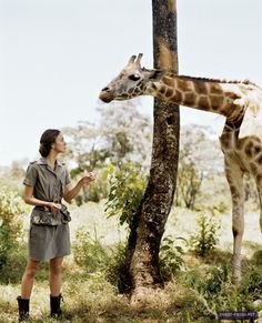 "I love this June 2007 Vogue photoshoot with Keira Knightley! I am a fan of the ""safari"" look to began with (and of Keria Knightley), but the fashion, styling, scenery, and prop styling is impeccable as well. Safari Chic, Mode Safari, Safari Theme, Keira Knightley, Keira Christina Knightley, Visit Cuba, Safari Adventure, Out Of Africa, African Safari"