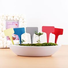 100Pcs T-type Plastic Nursery Garden Plant Label Flower Thick Tag Mark Good Quality Flower Label Free Shipping