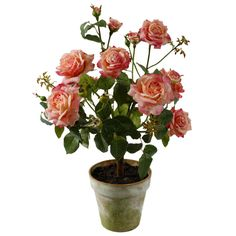 Faux Potted Garden Rose