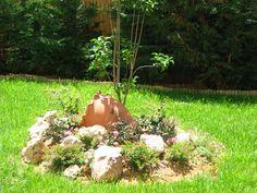 Garden Delight: Συνθέσεις - Βραχόκηποι