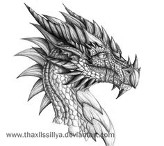 Drawings of dragon heads in pencil dating