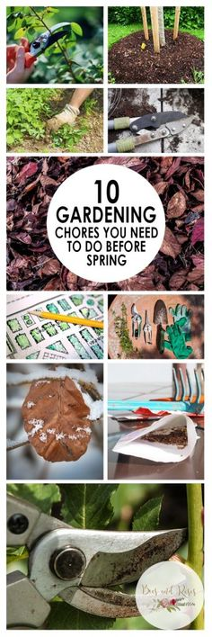 10 Gardening Chores You NEED to Do Before Spring
