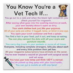 Customisable vet tech gifts - t-shirts, posters, mugs, accessories and more from Zazzle. Choose your favourite vet tech gift from thousands of available products. Vet Tech Quotes, Tech Humor, Veterinary World, Veterinary Medicine, Medicine Humor, Veterinary Memes, Veterinarian Technician, Veterinarian Quotes, Nice