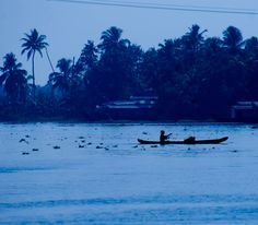 kerala by the evenings... (photo by KS)