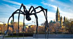 11 Ottawa Activities You Can Do With Your Friends This Summer Ottawa Activities, Ottawa City, Friend Activities, Done With You, You Can Do, Mount Rushmore, Stock Photos, Canning, Friends