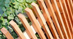 Best Indoor Garden Ideas for 2020 - Modern Hydrangea Seeds, Hydrangea Care, Home Fencing, Garden Fencing, Veg Garden, Water Garden, Intranet Portal, Chain Fence, Landscape Elements