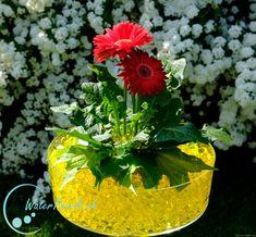 Perfekte Waterpearls für den Sommer!