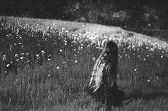 Fields of stars by Sylvie-Ann