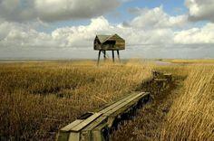 Vogel kijkhut Nieuwe Statenzijl.    Foto Arend Hakkeling