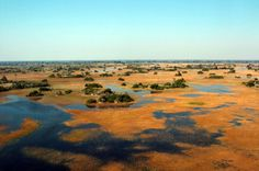Botswana - Okavango Delta - can you believe we were driving here to go canoeing through the swamps but we had to turn back. The Okavango Swamp was flooded because of that rain storm we hit in Chobe National Park.