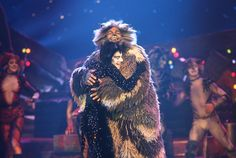 Cats On Screen Cats The Musical Musicals Cats Musical Cats Cast