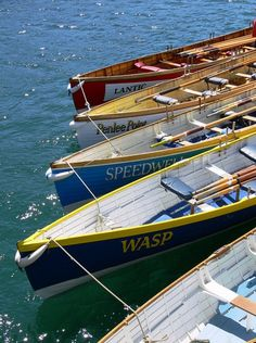 Colorful boats make for a fun day out on the water!