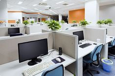 Looking for Dubai Office Cleaning Services or Commercial Cleaning? Daily, Weekly, Monthly & One Time Office Cleaning. Office Cleaning Services, Commercial Cleaning Services, Commercial Movers, Commercial Cleaners, Cleaning Companies, Office Relocation, Relocation Services, Office Plants, How To Clean Carpet