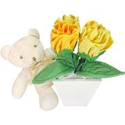 Urso Max e Rosas de Pano