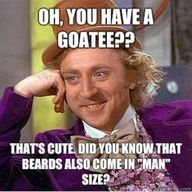 """Oh you have a goatee? That's cute. Did you know that beards also come in  MAN size?"" Awesome Beards 