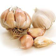 Hardneck Garlic - Chinese Pink Garlic