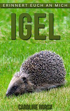 Igel: Ein Kinderbuch Mit Erstaunlichen Fotos Und Interessanten Fakten Über Igel PDF