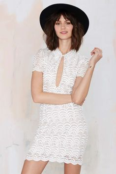 Stone Cold Fox Luke Embroidered Mesh Dress at Nasty Gal