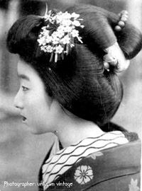 Yakko-Shimada Hairstyle  Hairstyle worn by senior Maiko for the New Year period,  Setsubun and on the 1st of August.