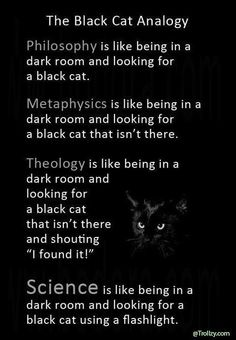 The Black Cat Analogy