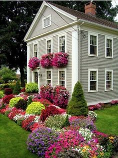 Love those window boxes!