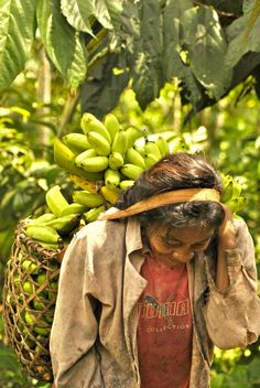 Working Woman San Martin, Colombia