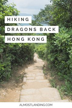 Hiking Dragons Back in Hong Kong was one of my absolute favourite things to do in Hong Kong. Find out why here...