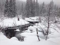 Snowshoeing in Oregon