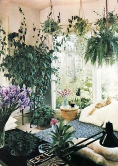 Hanging plants make this indoor garden feel cozy! and lush. Plants everywhere in the living room! Decor, Home And Garden, Garden Room, House Plants, Hanging Plants, Indoor Gardens, Interior Inspiration, Bohemian House, House Styles