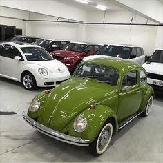 Fusca 1500 1971 verde Guarujá e New Beetle 2010 Final Edition. Foto enviada pelo amigo @joaopaulopredrosom  QUER VER O SEU CARRO AQUI? MANDE AS FOTOS VIA DIRECT. Obs.: Envie a descrição do carro, modelo, ano, alterações e etc... Iremos publicar com a foto. -------------------------------- #vw #volks #volkswagen #aircooled #vwair #vwaircooled #euamofusca #vwbus #fusca #oldschool #oldcar #brasilia #vwbrasilia #motores #hothod #carros #carroantigo #carrorebaixado #carrosclassicos #classicos…