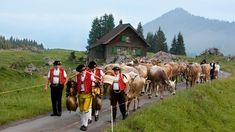 Urnäsch alpine procession