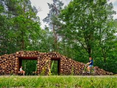 Raised circular cycling path gives 360-degree views of Belgian forest